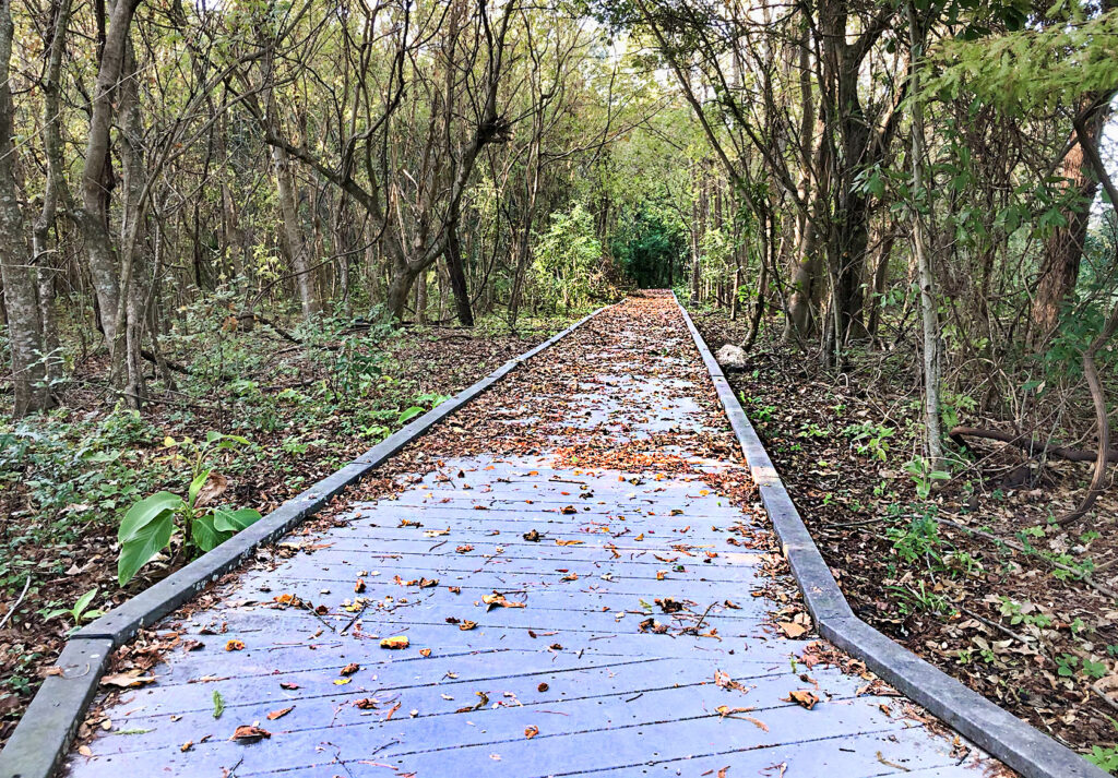 La Salle park trails in Metairie - nola places photo