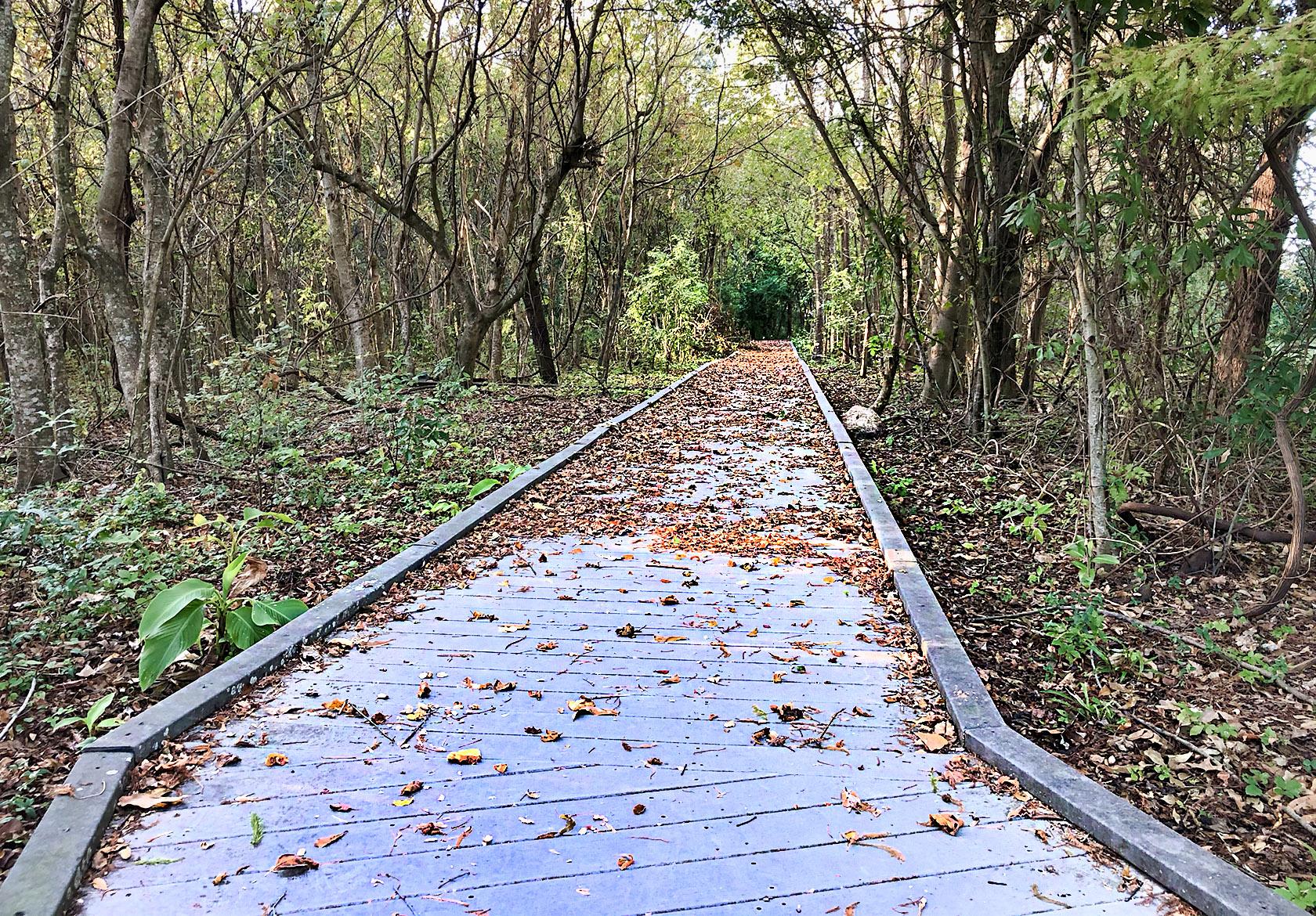 La Salle park trails in Metairie - nola places photo