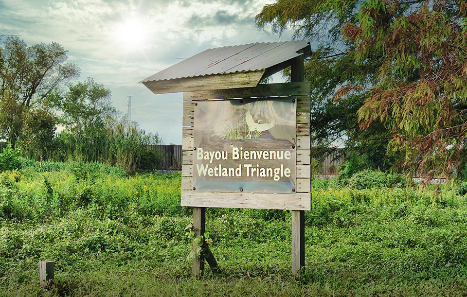 bayou bienvenue wetlands viewing area - nolaplaces photo