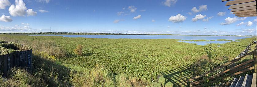 bayou bienvenue wetlands pano - nola places